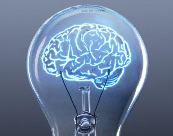 cerebro ampolleta